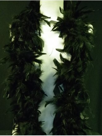 Black Feather Trimming