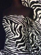Chiffon Silk Touch Sheer Fabric- Zebra  Q709 BKCRM