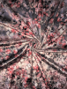 NEW Premium Velvet Heavy Scuba Backed Stretch Spandex Fabric- Cherry Blossom SQ314 GRPN